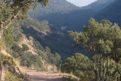 Ruta del Corcho